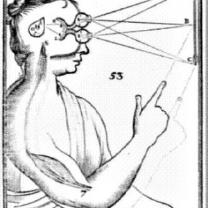 braineye